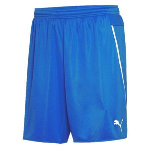 Puma Men's/Youth Speed Short - Royal/White