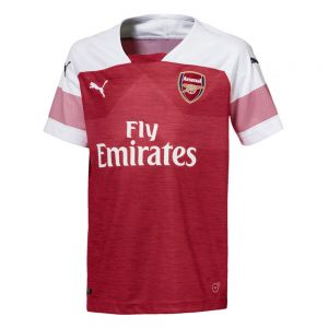 Puma Youth Arsenal Home Jersey 18/19 - Chili Pepper Heather/White