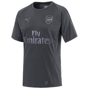 Puma Arsenal Training Jersey - Iron Gate
