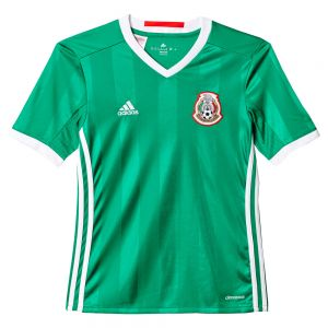 adidas Youth Mexico Home Jersey 2016 Green