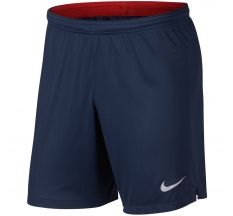 Nike Paris Saint-Germain Short 18/19
