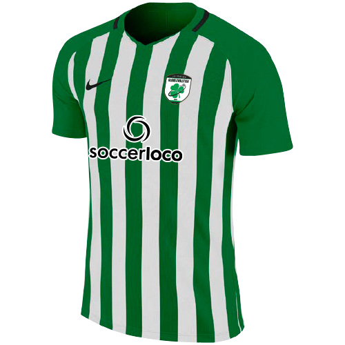 Nike Youth Striped Division Iii Jersey - Pine Green/white