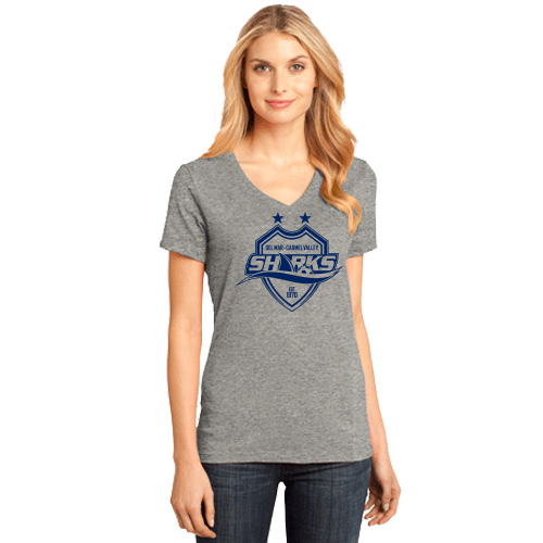 Dm Ladies Perfect Weight V-neck Tee - Heather Grey