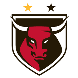 Honolulu Bulls Soccer Club