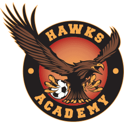 Laguna Hills Hawks